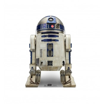 R2-D2™ (Star Wars IX) - $39.95