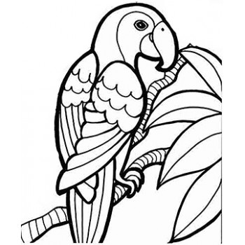 Colorful-Parrot Cardboard Coloring Cutout - $14.99