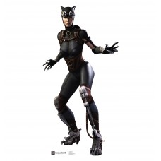 Catwoman Injustice DC Comics Game