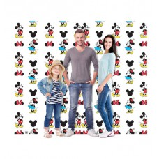 Mickey and Minnie Double Wide Step and Repeat