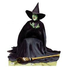 Wicked Witch Melting Wizard of Oz