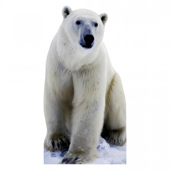 Polar Bear Cardboard Cutout - $44.95