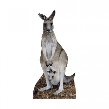 Kangaroo Cardboard Cutout - $44.95